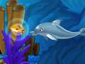 Moje predstavenie s delfínmi 4