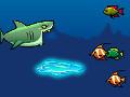 Rogue Sharks Arcade